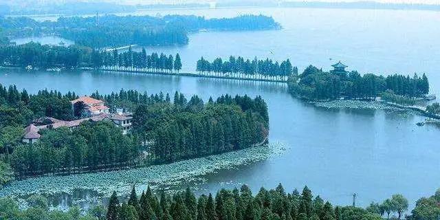 阿丽拉武汉东湖酒店.jpg