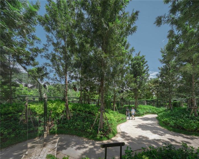 酒店趣味景观设计-沉浸在奇妙自然中的仙境森林主题度假酒店设计案例