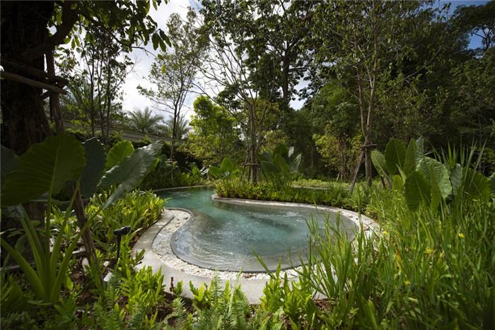 沉浸在奇妙自然中的仙境森林主题度假酒店设计案例