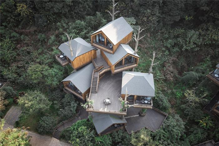 最新树屋酒店设计  杭州开元森泊度假酒店树屋设计
